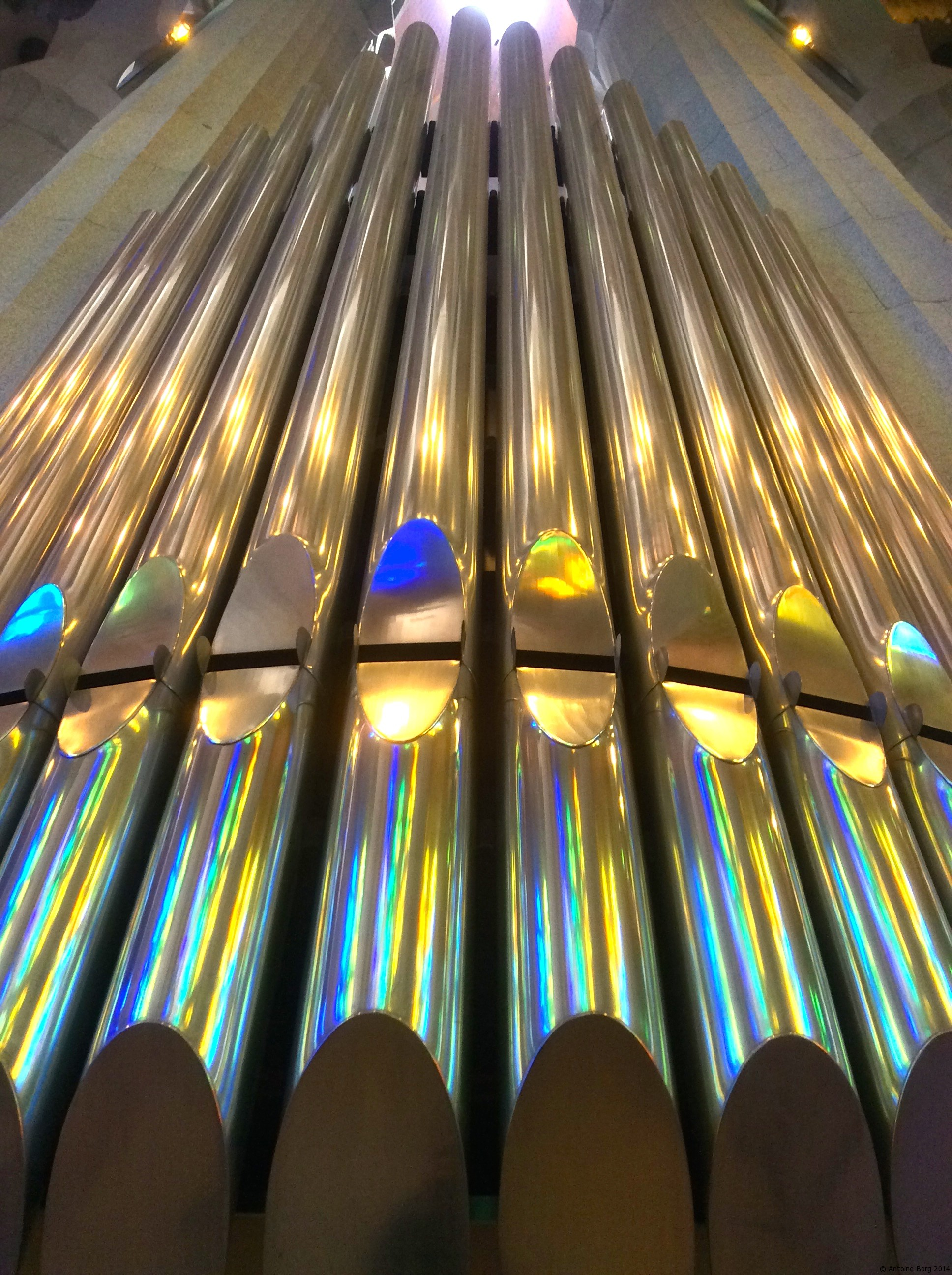 A photo of the organ in the Sagrada Familia